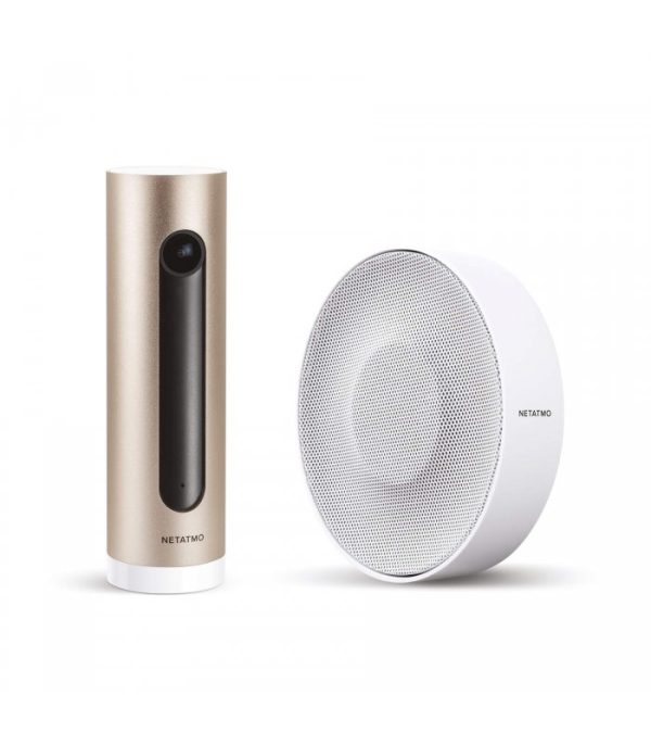 image-Netatmo Smart Indoor Siren